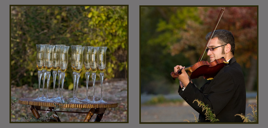 fun wedding details - champagne glasses and violinist