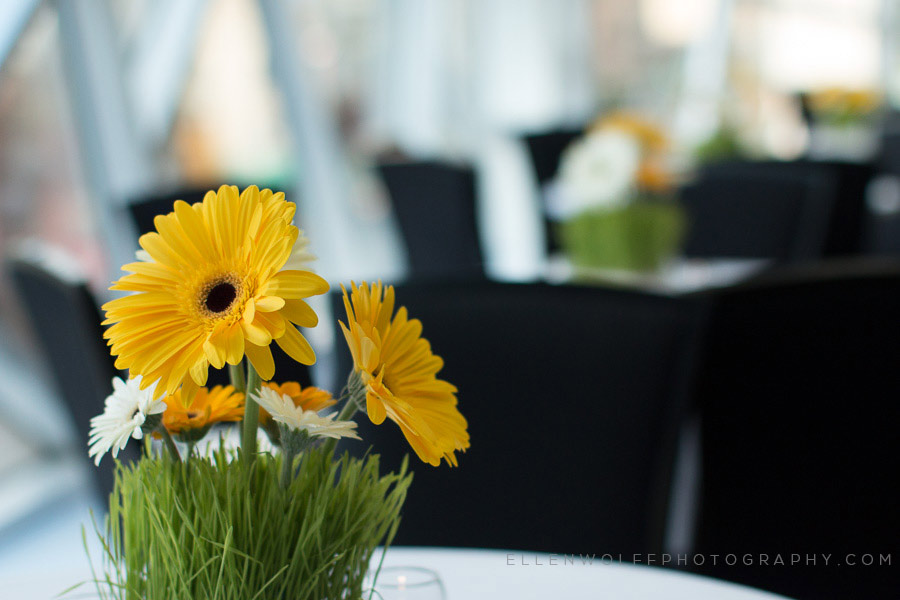 small cocktail table centerpieces of fresh large yellow and white daisies